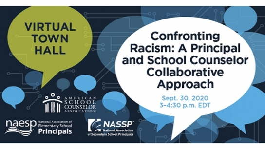 Confronting Racism: A Principal and School Counselor Collaborative Approach