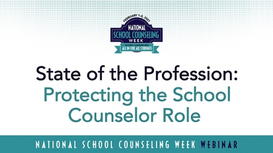 Protecting the School Counselor Role