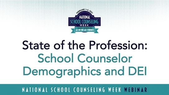 School Counselor Demographics and DEI